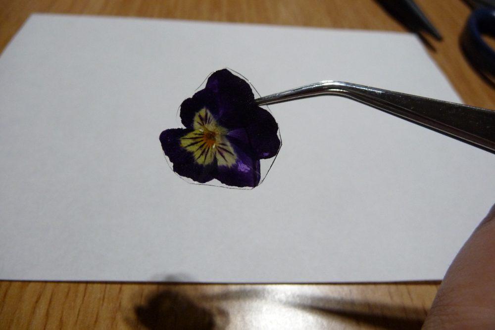 押し花を加工3