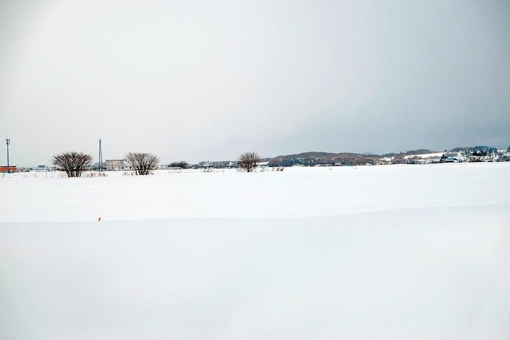 雪の旭川市内