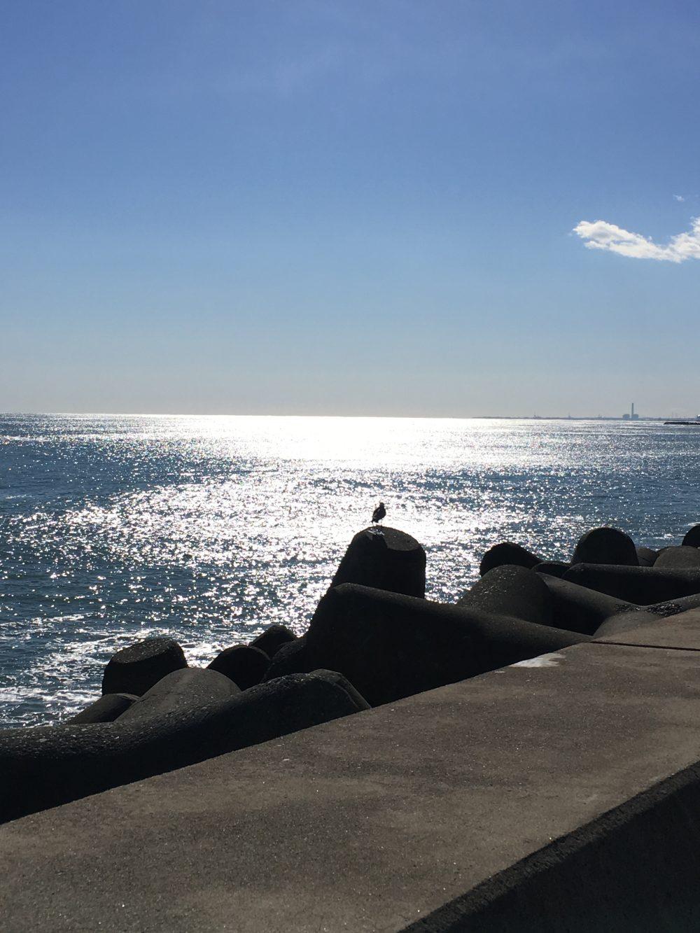 日立の海2